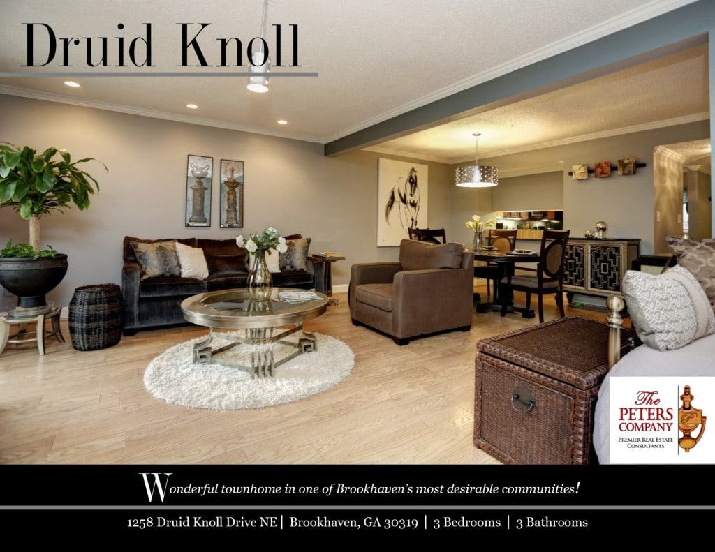 1258 Druid Knoll Drive Flyer front